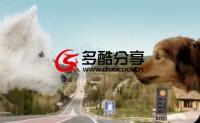 【广告欣赏】创意汽车广告 狗狗的爱恋